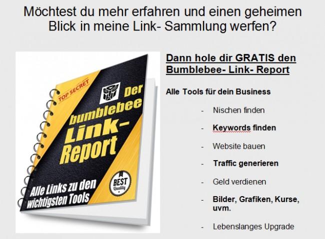link report artikel2